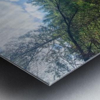 Waterfall Delight Metal print