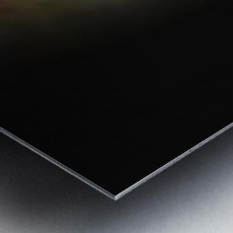 Tiny - walking Metal print