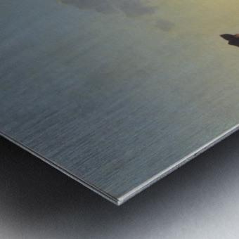 Schafherde auf der Weide Metal print