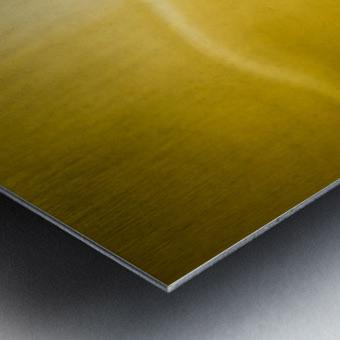 Creation Metal print