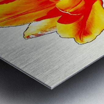 Poppy 3 Metal print