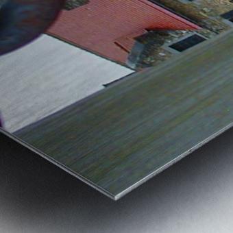 Ticondaroga Metal print