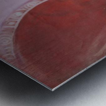 steve5 Metal print