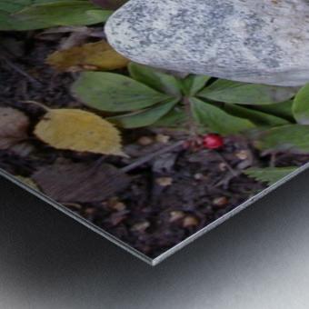 Red Mushroom & Rock Metal print