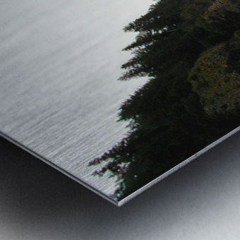 Point with bird Metal print