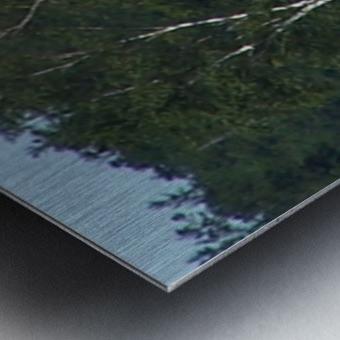 Sasquatch1 Impression metal
