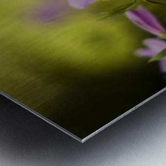 0239 Metal print