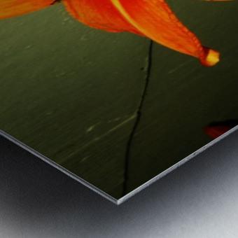sofn-D014FA2F Metal print
