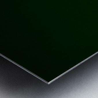 E (4) Metal print