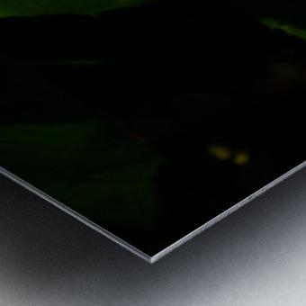 sofn-B03175AE Metal print