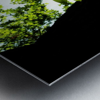 sofn-5DA369EA Metal print