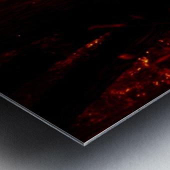 sofn-E4ED44CE Metal print