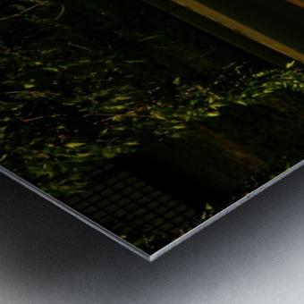 sofn-3048EECD Metal print