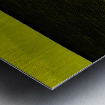 sofn-B9FE4CE7 Metal print
