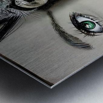 Reflection 2 Metal print