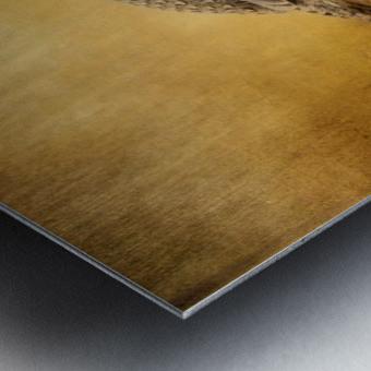 Female Ruffed Grouse Metal print