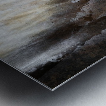 Arion Metal print