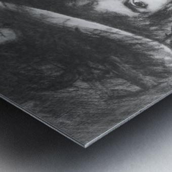 Baroness de Meyer by John Singer Sargent Metal print