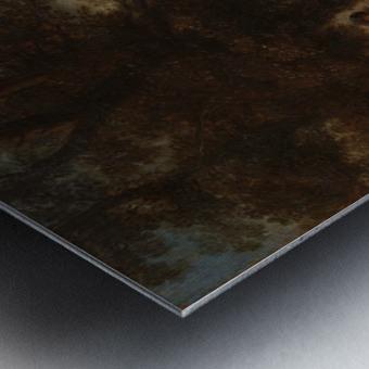 De slaande schimmel Metal print