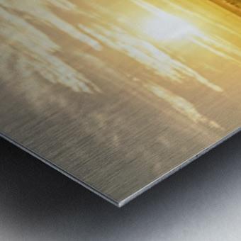 facing the sun Metal print