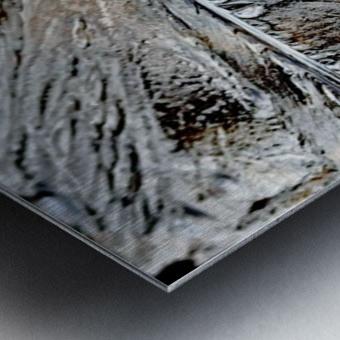 Frozen Metal print
