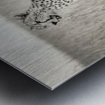 Born to Speed Metal print