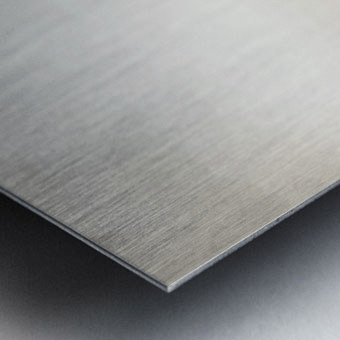 Zebrascape Metal print
