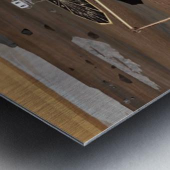 Phoenix Mars Lander Metal print