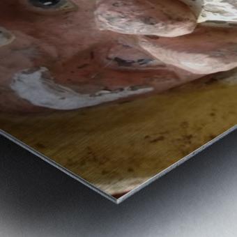 ahson qazi_self Portrait_artist_painter_calligrapher_Shades of divinity_Photographer 2 Metal print