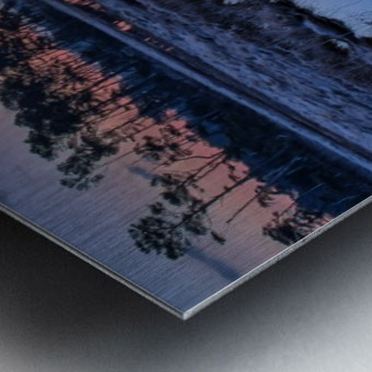 Black Duck Pool - APC-376 Metal print