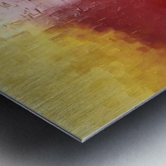 IMG_0027 Metal print