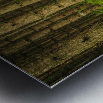 _S9A1813 Modifier Metal print