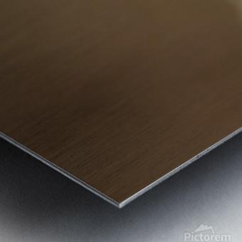 164A1043 Metal print