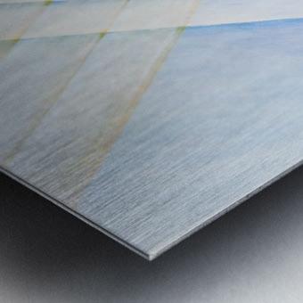 CLARITY Metal print