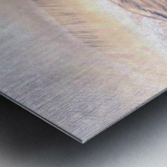 20180930_145000 Metal print