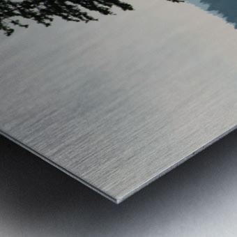 Lonely Tree Metal print