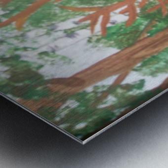 Maine Elk Metal print