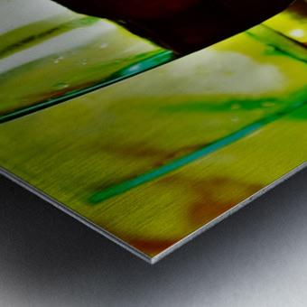 winedown Metal print
