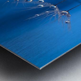 Blue fun Metal print
