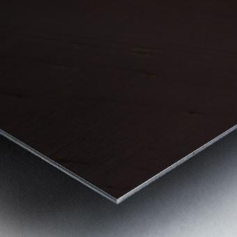 2017.06 - Essence of Sossusvlei Metal print