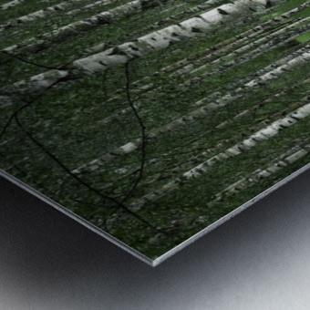 The tunnel Metal print