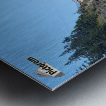 Swallowtale 4 Metal print