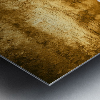 Tropical XVI - Golden Beach Metal print