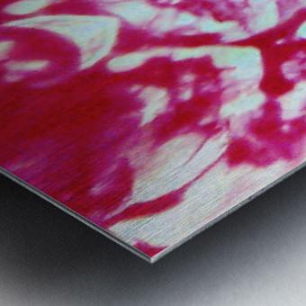 1541252672198~2 Metal print