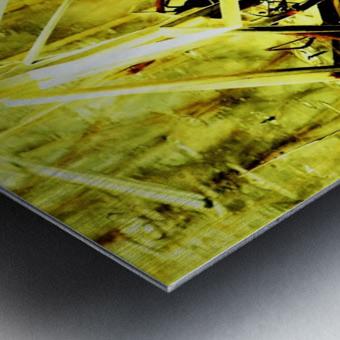 DSC_0129 (2)_LI Metal print