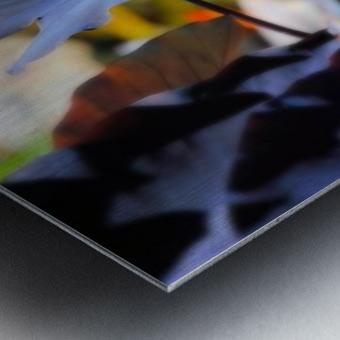 4C5E1FA6 4EC5 43E2 9F43 880F556CAD47 Metal print
