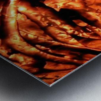 1542081824042 Metal print