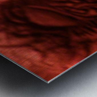 1542090296390_1542132090.4 Metal print