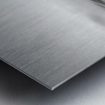 plop Metal print