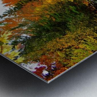 10.9.18 Fall Metal print